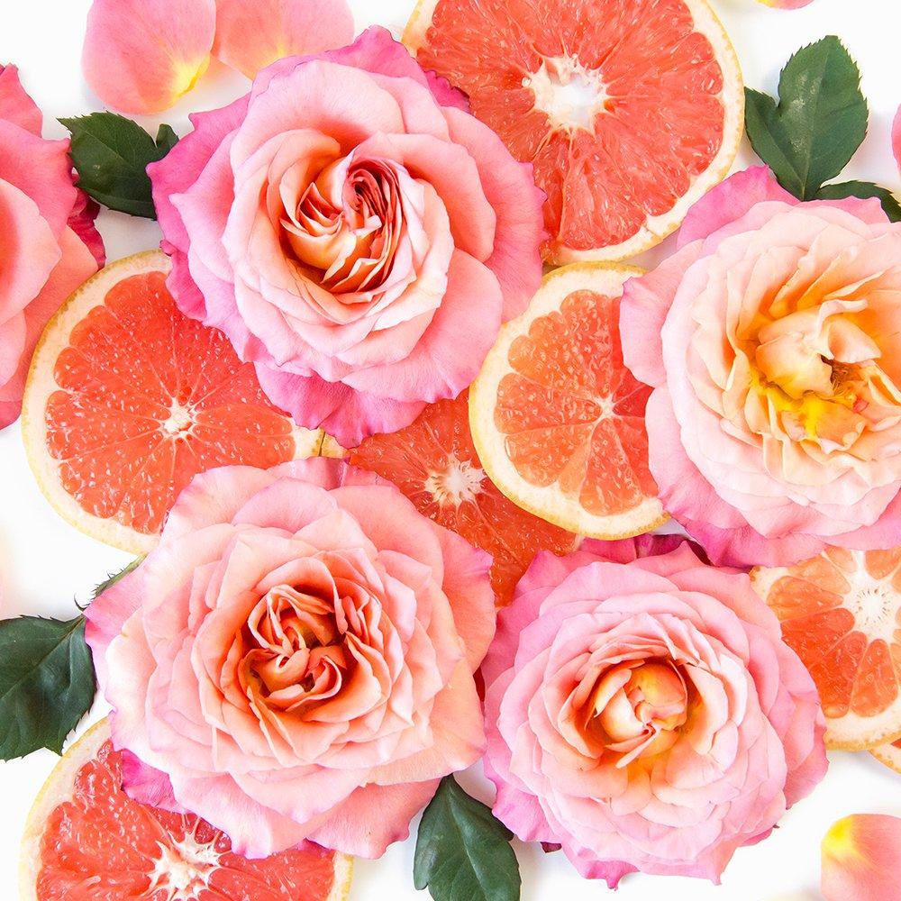 Parfüm Selber Herstellen Grapefruit Ätherische Öle Kinder Aromatherapie